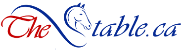 Logo - The Stable.ca